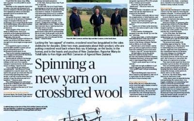 Spinning A New Yarn on Crossbred Wool